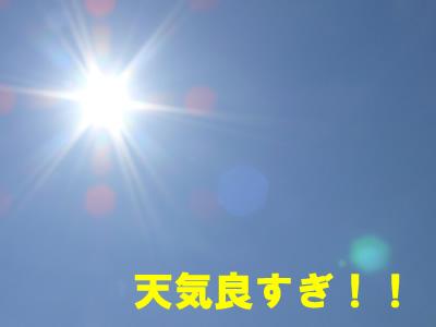 2008.06.10p-1.jpg