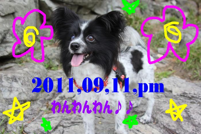 20110911pm-1.jpg